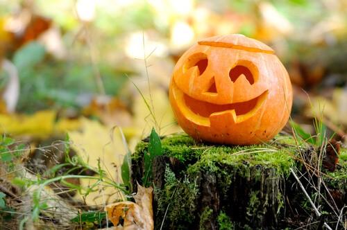 healthy happy halloween pumpkin